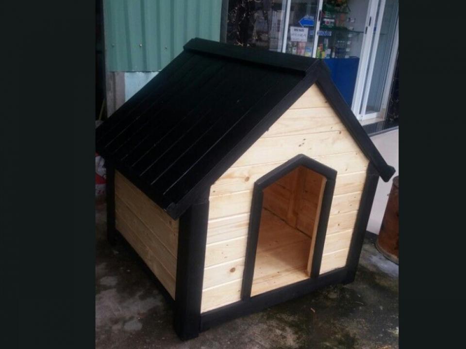 Nhà của cún yêu 1