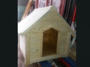 Nhà của cún yêu